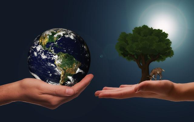 strom a zeměkoule na dlaních